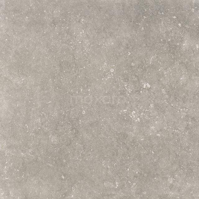 Vloertegel/Wandtegel Freestone Grey 59,5 x 59,5cm Natuursteenlook Grijs Gerectificeerd 403-080101