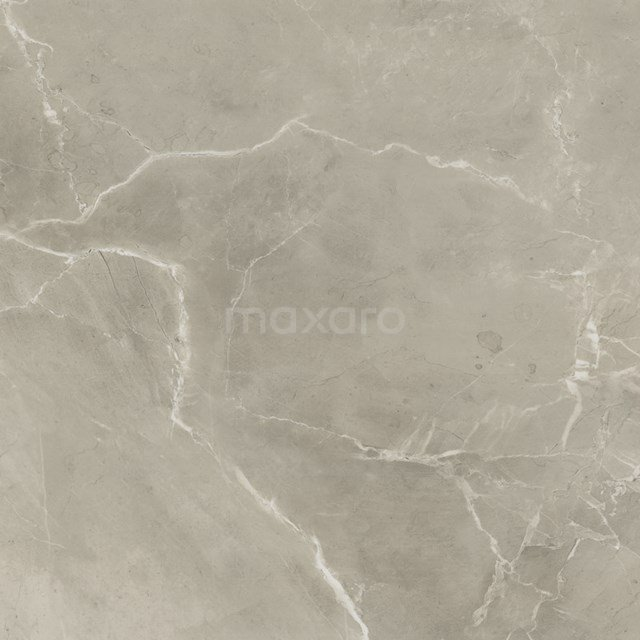 Tegelsample, Vloertegel/Wandtegel, Lucido Greige Mat 503-0503TS